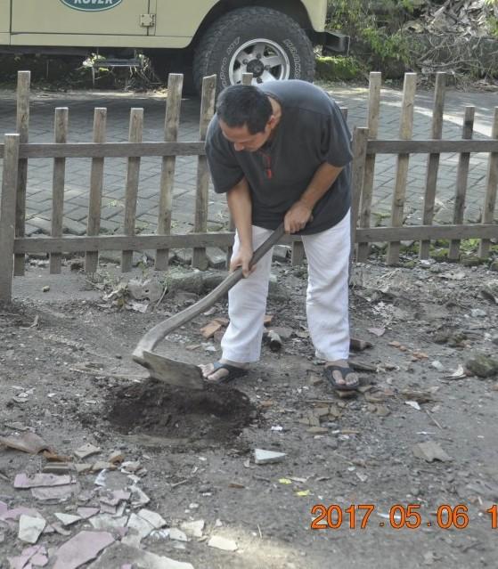 Puji Pujiono mencangkul sendiri tanah untuk tanam pohon sirsak di halaman Joglo Ervi Pujiono. (Foto: Djuni Pristiyanto)